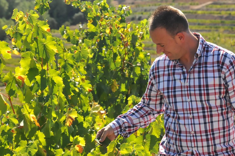 Vinergia Spanish Wines Jose Manuel Mainar