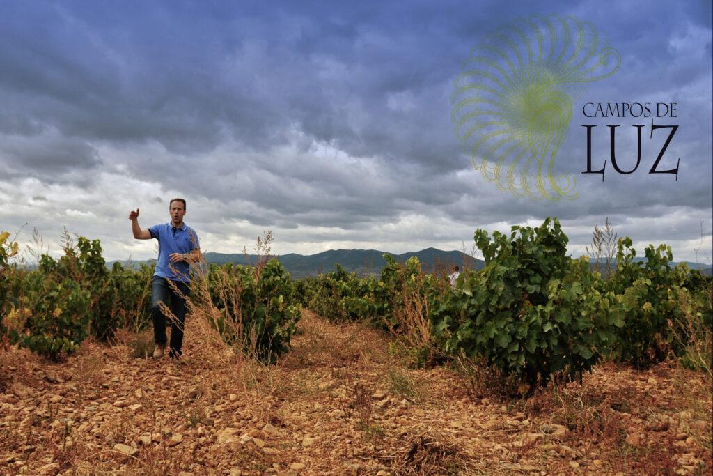 Campos de Luz (vineyard) 2