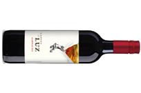 Vinergia Spanish Wines Campos de Luz Garnacha