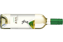 Vinergia Spanish Wines Campos de Luz White Viura