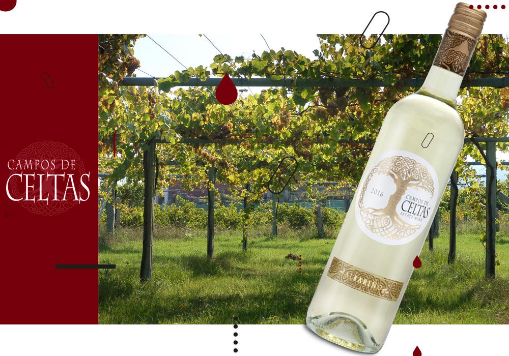 Vinergia Spanish Wines Campos de Celtas Albariño