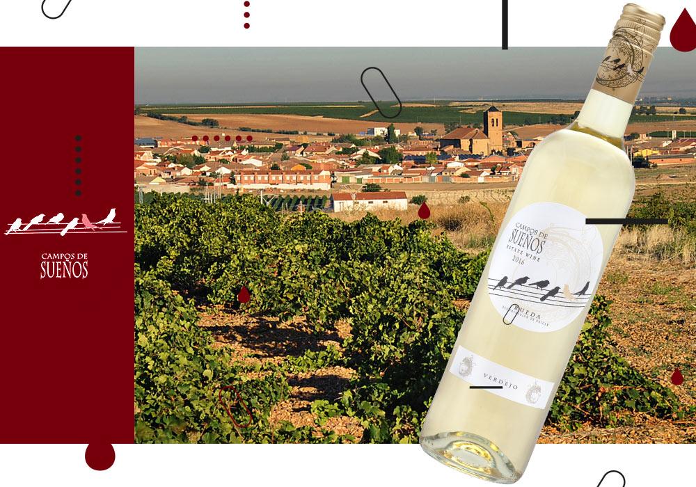 Vinergia Spanish Wines Campos de Sueños