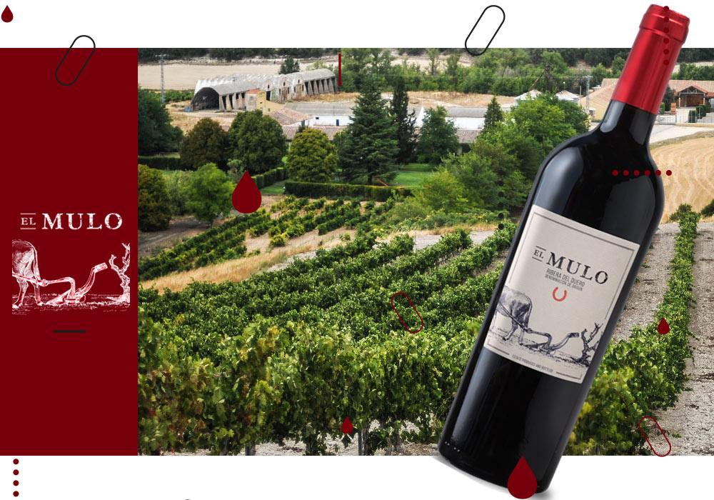 Vinergia Spanish Wines El Mulo D.O. Ribera del Duero