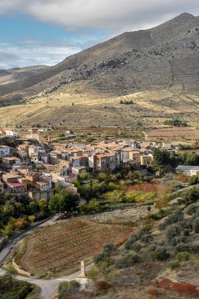 Amigo de la Tierra A range of organic spanish wines