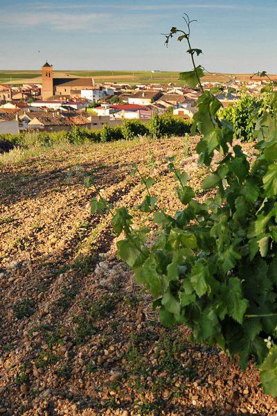 Campos de Sueños Spanish Plain
