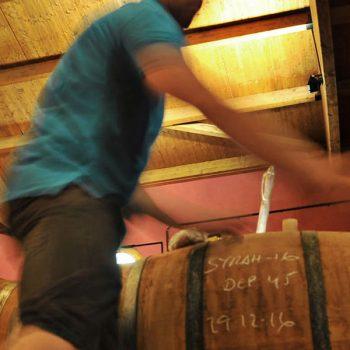 Vinergia Spanish Wines Campos de Luz Cellar